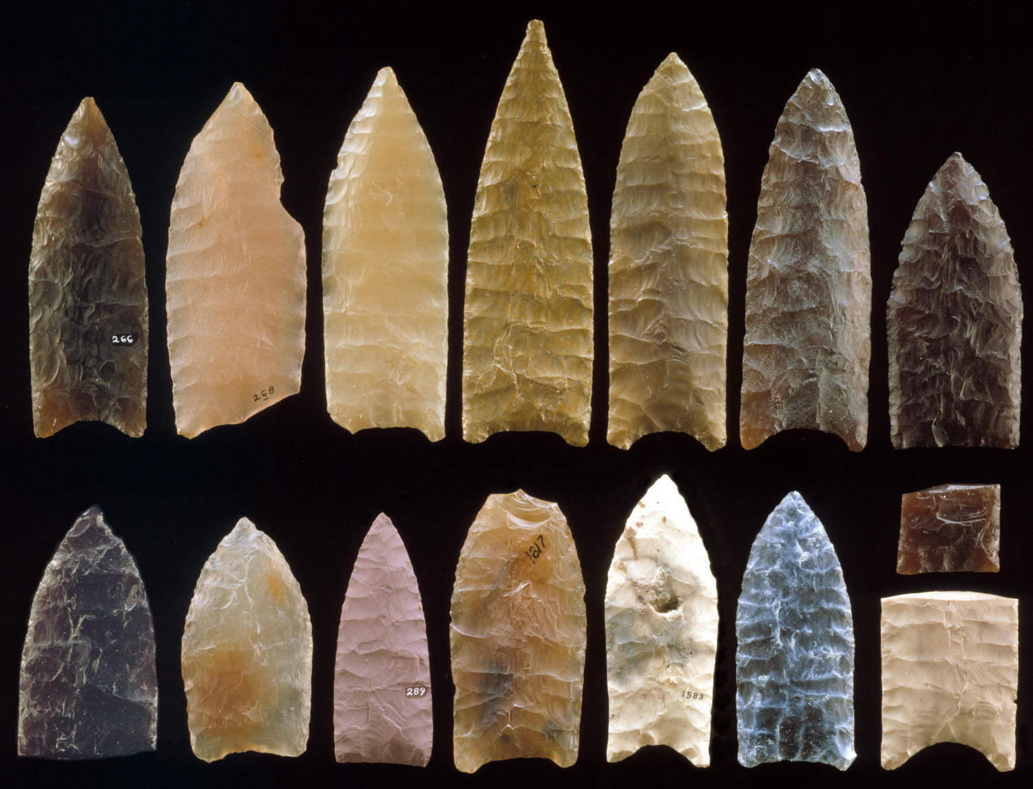 Cascade Projectile Point