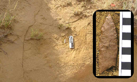 Projectile point insitu on the Dilts site.