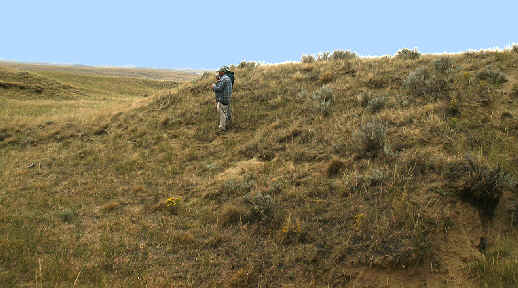 Dilts site, Campbell County, Wyoming.