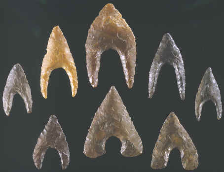 Eight Hollow Base points from Egypt.