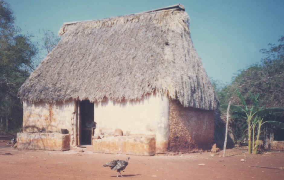Maya thatched roof adobe wall house for Adobe roof