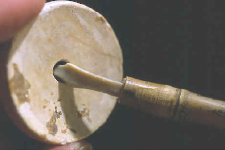 Large shell bead and hafted micro-drill.