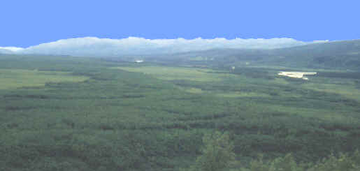 The Nenana Valley below the Moose Creek site, 1996.